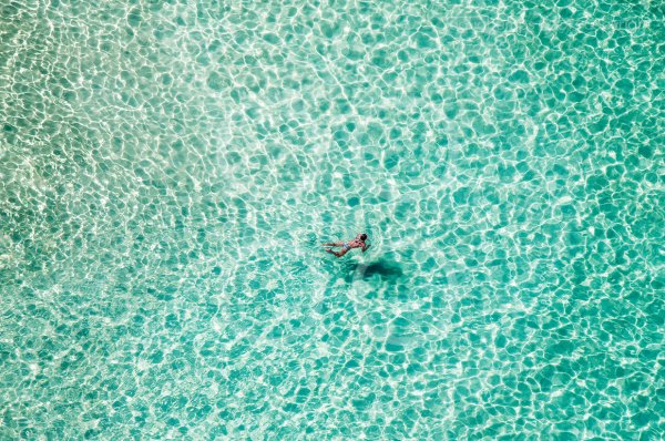 lone swimmer north bondi