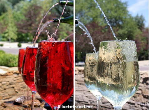 Milestii Mici winery garden in Moldova - large wine glasses
