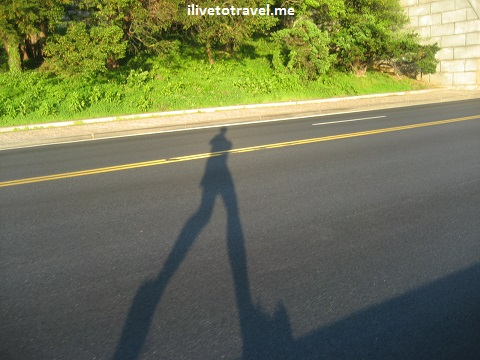 Runner along the Potomac River casts a shadow on the pavement