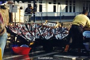 Istanbul, Estambul, Turkey, Turquia, Turkey, fish, Karakoy, photos, travel, Canon EOS Rebel