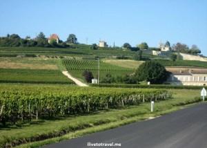 Bordeaux, landscape, vista, France, photo, wine, travel, Canon EOS Rebel, great drive, countryside
