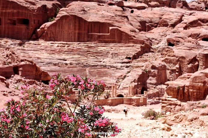 Petra, Jordan, Nabatean, archeology, ruins, history, necropolis, ancient site, exploring, Middle East, travel, photos, Canon EOS Rebel, donkey, ilivetotravel, Roman amphitheater
