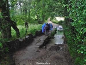 Camino frances, trail, Camino, Santiago, Spain, travel, photo, trekking, Olympus