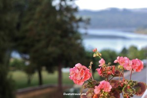 Portomarin, Camino, Santiago, view, rose, rio Miño, Spain, Miño river,scene, photo, travel, Canon EOS Rebel