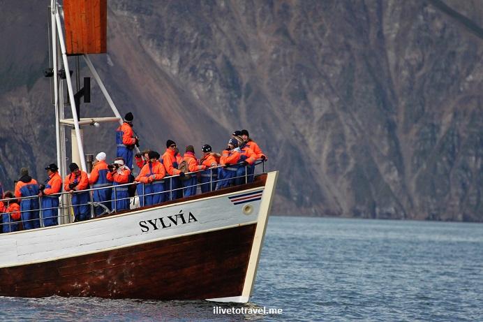 Iceland, sea, boat, whale watching, Husavik, minke, humpback, whale,Canon EOS Rebel