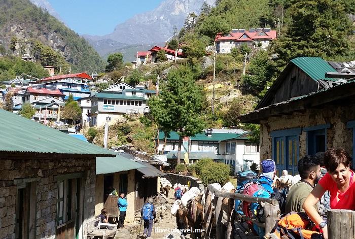 Everest Base Camp, trail,trek, trekking, terrain, hiking, Nepal, Himalayas, outdoors, adventure, Olympus