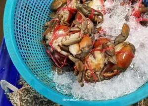 Maeklong, railroad, train, market, Thailand, Bangkok, photo, travel, explore, Samsung Galaxy S7, crab, seafood