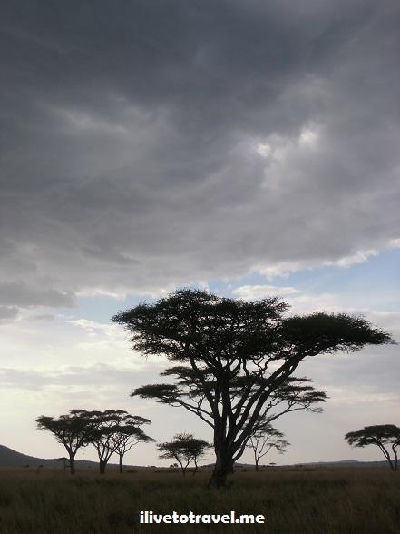 Ngorongoro, Serengeti, safari, Tanzania, explore, adventure, Africa, travel, photos, sunset, clouds