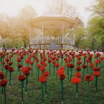 Field of Knitted Poppies to be displayed on Victoria Park …