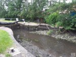 """Who would do this?  Fish have been """"distressed"""" after a section of Erewash Canal..."""