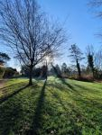 Helen Bird: Sunny morning in West Hallam...