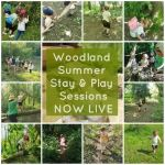 Wild Bears Woodland Summer 'stay & play' Sessions for 3-11 Year olds are now liv...