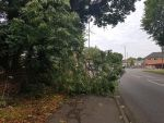 Be aware of this obstacle on Heanor Road....