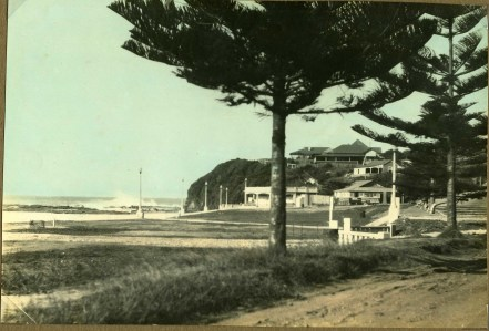 Lawrence Hargrave Drive - Austinmer Kiosk and Norfolk Pines