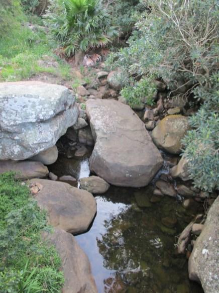 Stoney Creek, Coalcliff - Pool