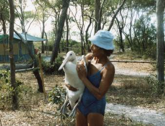 Carol North with pelican - 13 August 1985, Punsand Bay, Cape York