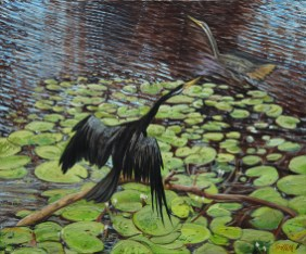 """""""Darter Pair"""", by Pamela Griffith"""