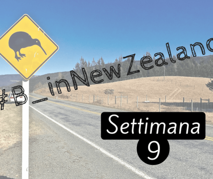 #B_inNewZealand – Settimana 9