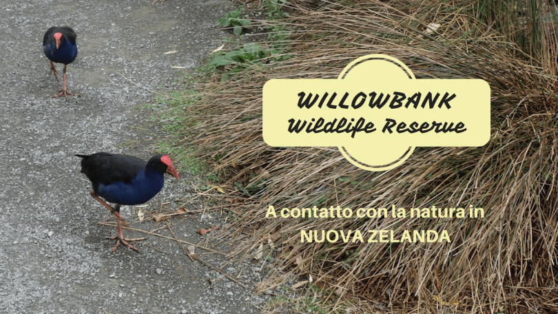 Willowbank Wildlife Reserve