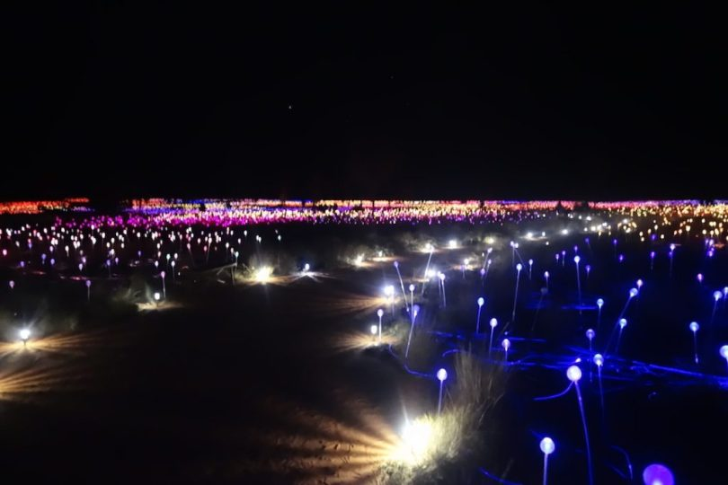 Field of Light a Uluru