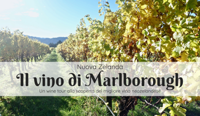 vino di Marlborough