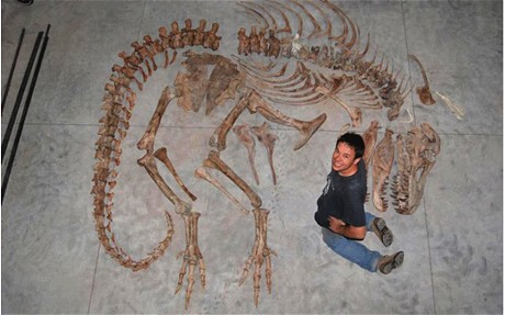 Eric Prokopi with a Tyrannosaurus skeleton