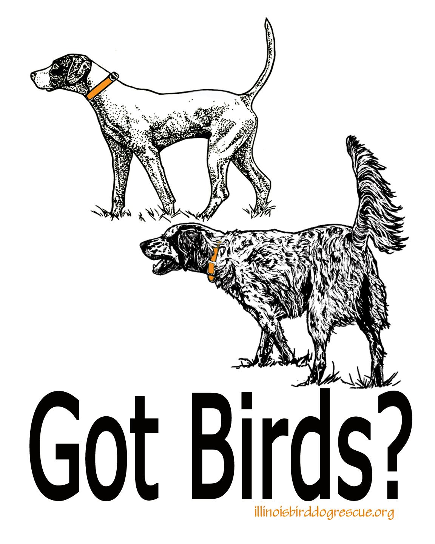 Illinois Birddog Rescue