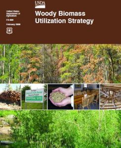 Woody-Biomass-Utilization-Publication