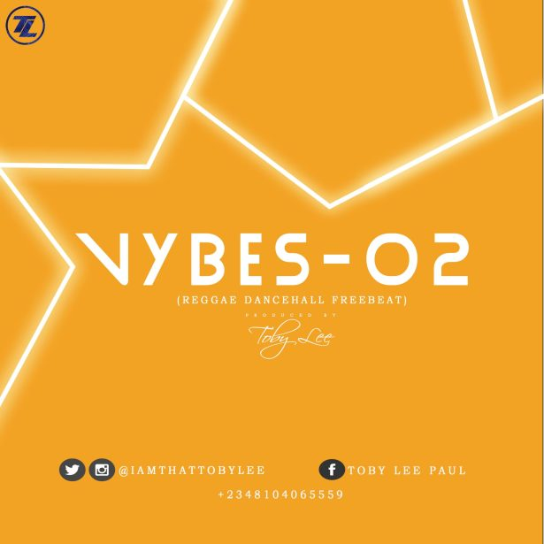 Download Reggae Dancehall Beat: Vybes-02 (Beat By Toby Lee)