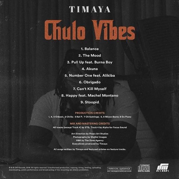 DOWNLOAD: Timaya ft. Burna Boy – Pull Up (mp3)