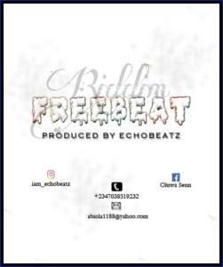 Freebeat: Riddim Afrobeat Instrumental (Prod Echo Beats)