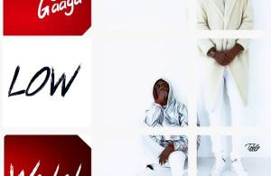 DOWNLOAD NOW: Larry Gaaga ft Wizkid – Low mp3