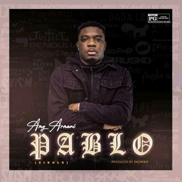 DOWNLOAD Amg Armani – Pablo MP3