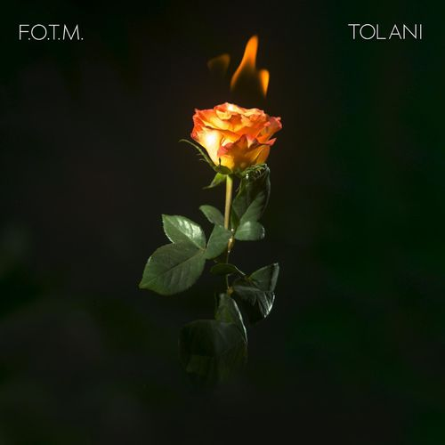 DOWNLOAD Tolani – Fire On The Mountain MP3
