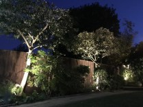 Milliners Way, St Micheals Mead, Bishops Stortford, illuminating gardens, garden lighting