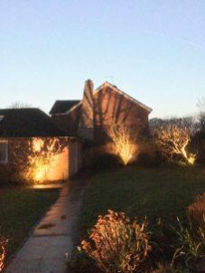 SHADOWS e1552408188401 - illuminating Gardens, Garden Lighting Installation Gallery