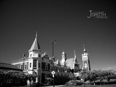Grand beauty in black & white.