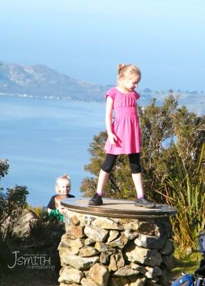 Mt Cargill, Dunedin, Otago Harbour