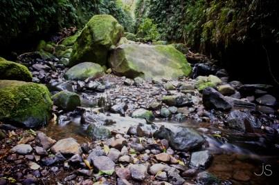 Leith Valley, Dunedin