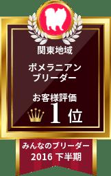 関東ポメ1位