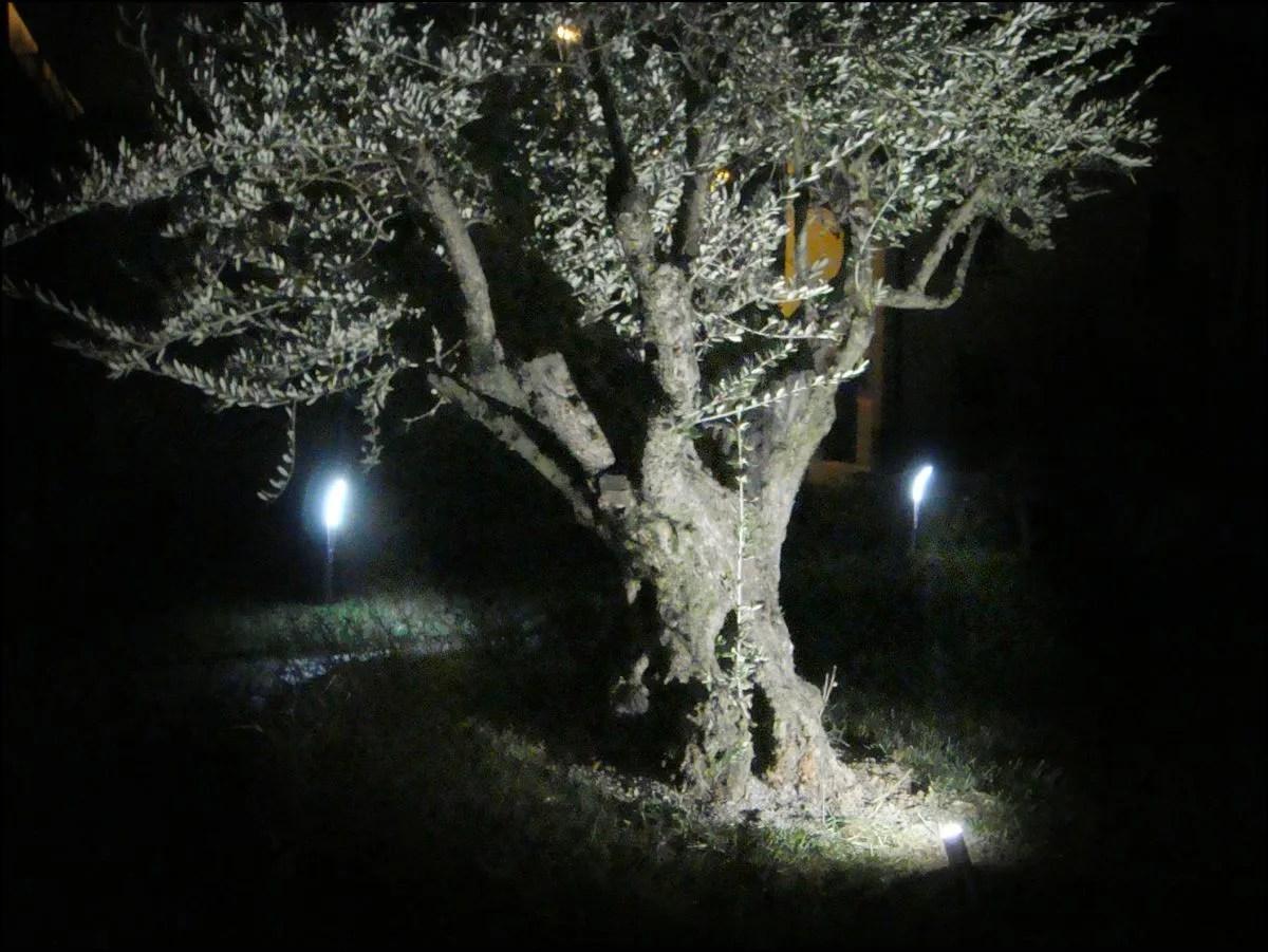 Idee per illuminazione da giardino idee di pavimenti in