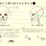【顔の描き方】骨格から顔の描き方を考えてみた