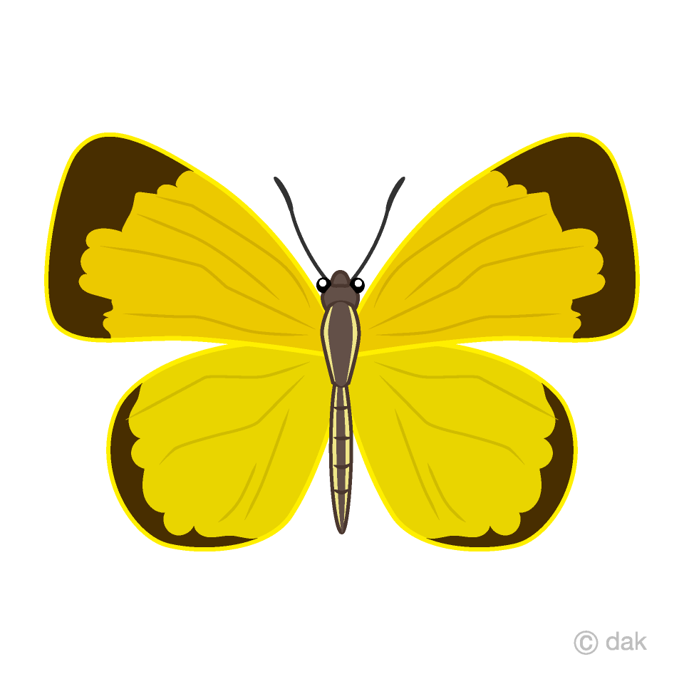 hight resolution of yellow butterfly clipart