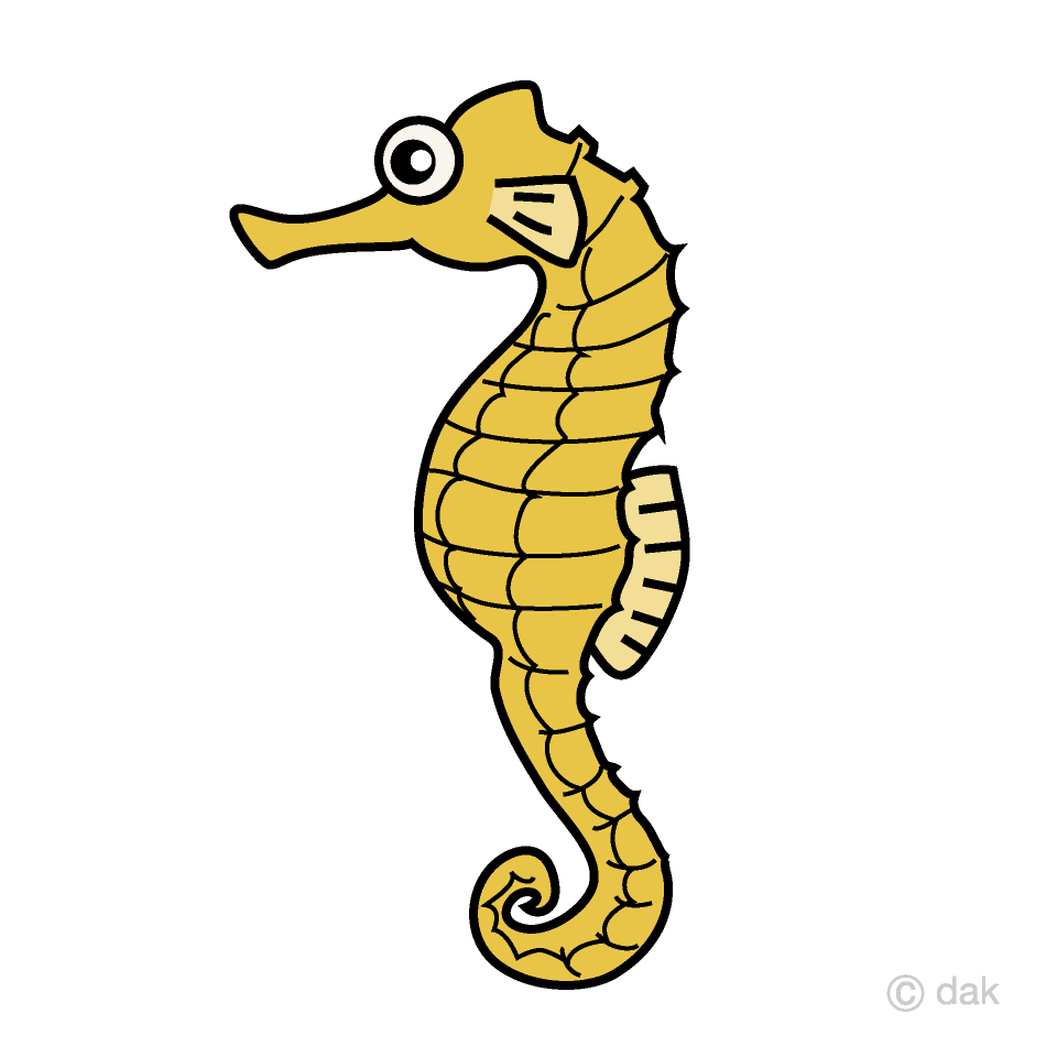 hight resolution of seahorse clipart