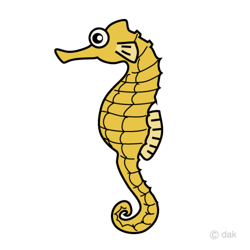small resolution of seahorse clipart