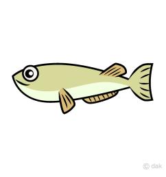 eel clipart [ 960 x 960 Pixel ]