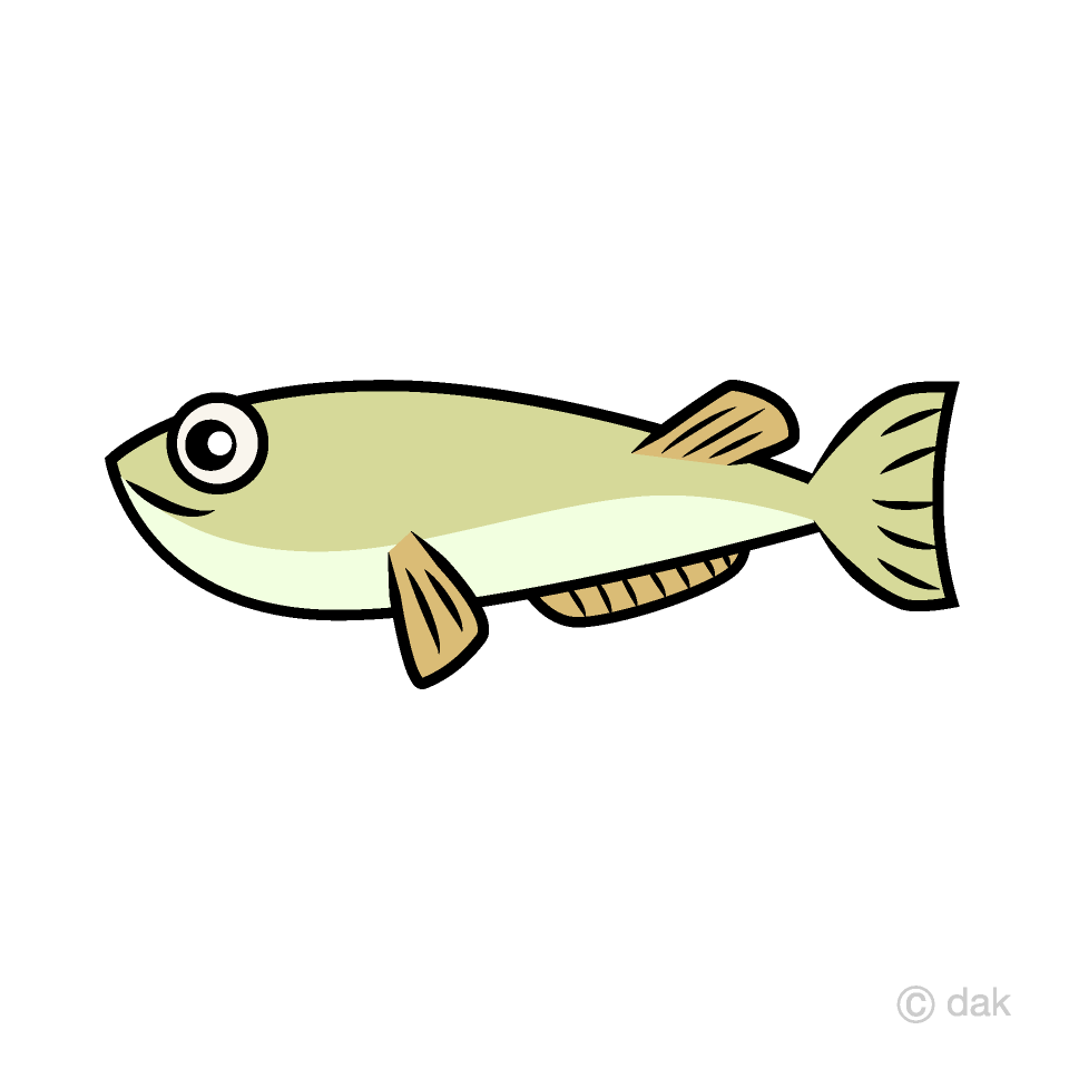 hight resolution of eel clipart