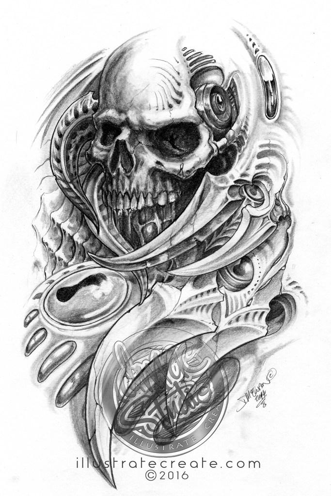 skull bio