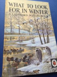 What to look for in Winter A Ladybird Book, Tunnicliffe