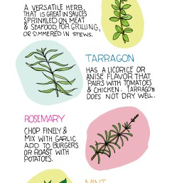 why not print it out and put it on the kitchen wall to inspire you to get creative with the herb garden  [ 1369 x 6750 Pixel ]